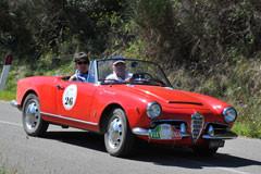 Alfa Romeo Guglia Spider 1963