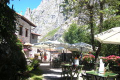 Bulnes-lunch