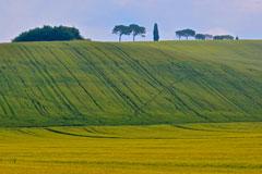 Tuscany-classic-car