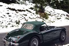 Austin Healey 100/4 BN1 1955